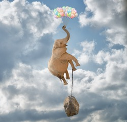 Elephant Flying With Balloons and with a stone tied to his leg