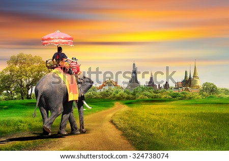 Elephant for tourists on an ride tour in Bangkok, Thailand, concept ストックフォト ©