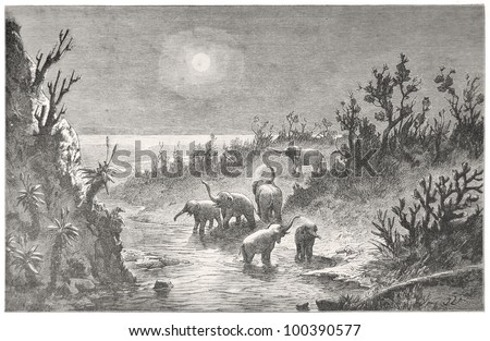 "Elephant herd at the Zondags River at moon night, drawn by J. Vanione in Emil Holub's ""Seven Years in South Africa"", published in Vienna, 1881"