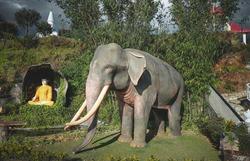 elephant, lord buddha sri lanka