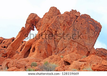 Elephant Rock in Valley of Fire State Park, Nevada