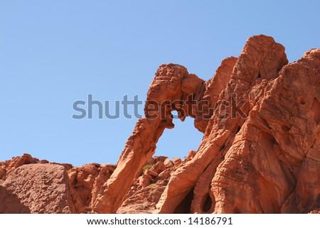 Elephant Rock, Valley of Fire, Nevada
