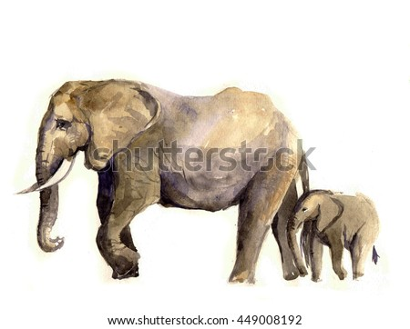 Elephant sketch watercolor illustration in jungle for print, poster, textiles, fashion design. Wild Tee shirt graphics. Watercolor Baby animals. Africa poster. Brazil jungle elephant