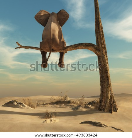 elephant stands on thin branch...