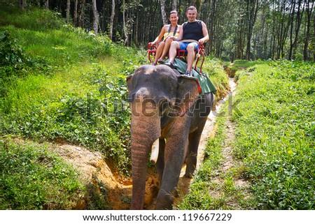 Elephant trekking in Khao Sok National Park, Thailand