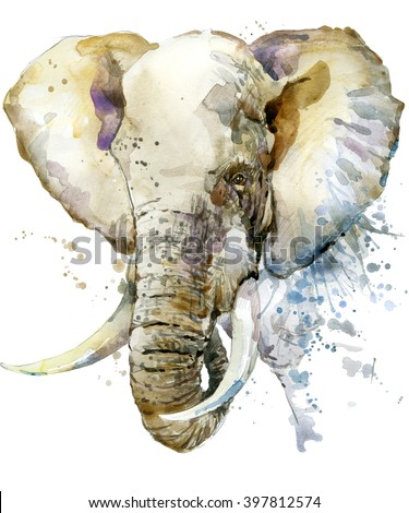 Elephant watercolor illustration with splash textured background.