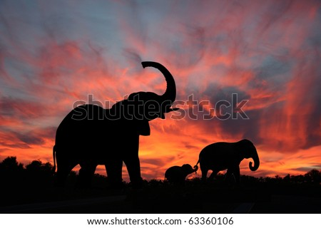 Elephants Enjoy a Spectacular Sunset on the Serengeti