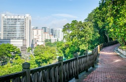 Elevated Pedestrian Walkway in Tropical Park with a View of the Singapore Skyline in the Distance - Singapore, Southeast Asia