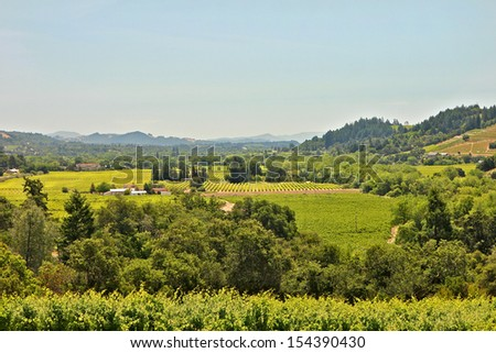 Elevated view of Sonoma Valley Ca