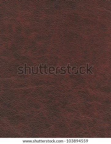 elite brown leather background.