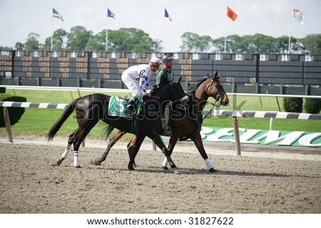 ELMONT - JUNE 6: Doremifasolatodo with Eibar Coa aboard in the Post Parade for The Acorn Grade I Stakes at Belmont Park on Belmont Stakes Day - June 6, 2009 in Elmont, NY.
