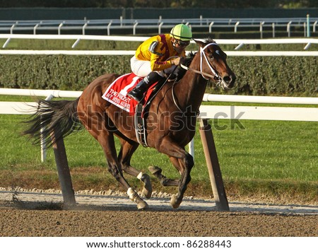 ELMONT, NY - OCT 8: Jockey Corey Nakatani pilots My Miss Aurelia to victory in The Frizette Stakes at Belmont Park on Oct. 8, 2011 in Elmont, NY.