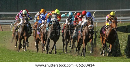 ELMONT, NY - OCT 8: The field takes the far turn in maiden claiming race at Belmont Park on Oct 8, 2011 in Elmont, NY. Eventual winner is Lemons to Lemonade (lead horse on right).