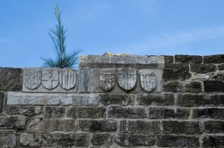 emblem and other signs carved into the wall of ancient Roman marble sculpture in Castle of St. Peter or Bodrum Castle, Turkey. Plant is grown uo on the wall