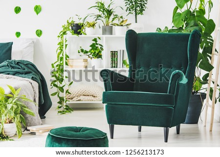 Emerald green comfortable armchair and pouf in contemporary bedroom interior with urban jungle #1256213173