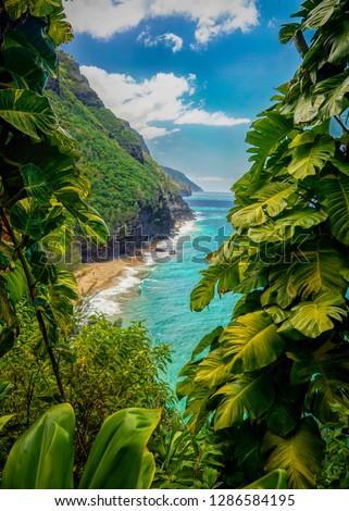 Emerald green waters lap at the Hawaiin coastline