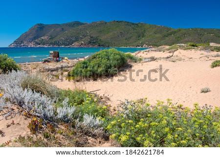 Emerald water in Porto Ferro beach, Sassari Foto stock ©