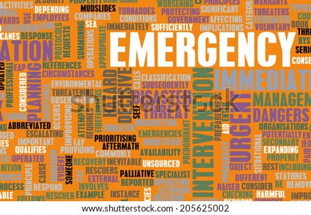 Emergency Planning and Disaster Response as Concept