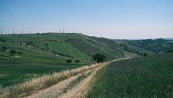 Emilian hills with green vegetation in Emilian hills with green vegetation in Ventoso of Scandiano Reggio Emilia, ItalyVentoso of Scandiano Reggio Emilia, Italy. High quality photo