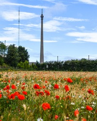 Emley Moor Televison Mast, West Yorkshire