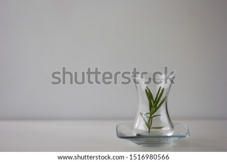 Empty Armudu tea glass with branch of rosemary in it on the white background Photo stock ©