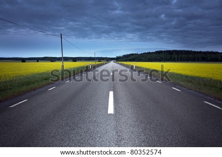 Empty asphalt road at night, crossing a rapeseed field