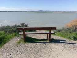Empty bench by the lake