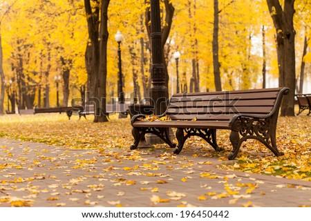 Empty bench in park #196450442