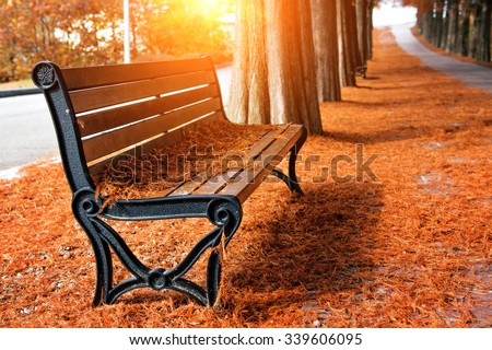 Empty bench in the autumnal park