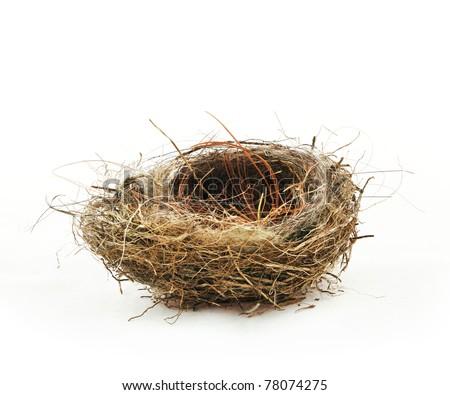 Empty bird's nest, isolated on white