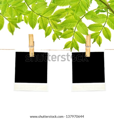 Empty cardboard tag on clothes line rope on garden background