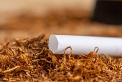 Empty cartridges with a filter for filling with tobacco, cigarettes on tobacco leaves. Health
