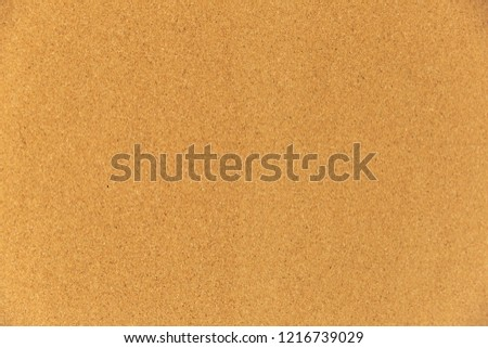 Empty cork board background.
