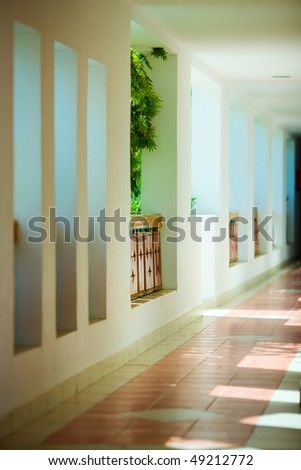 Empty corridor in hotel with plants ans sunlight
