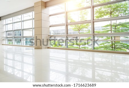Empty corridor in modern office building with green tree outside the window.