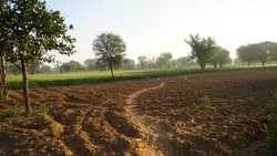 Empty desolate agriculture field. Farm without crops in India. New farm bill protest in India and adverse condition in Agriculture GDP growth.