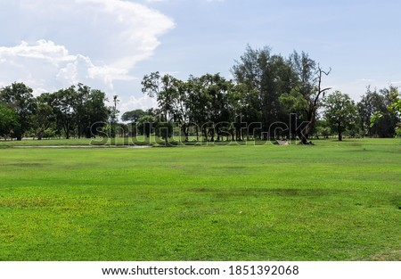 Empty dry cracked swamp reclamation soil, land plot for housing construction Green meadow, beautiful views and beautiful blue sky with fresh air Land for sales landscape concept. Stockfoto ©