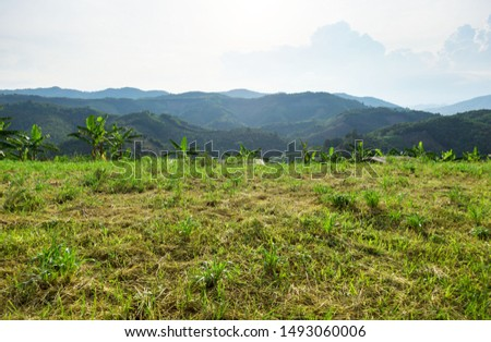 Empty dry cracked swamp reclamation soil, land plot for housing construction Green meadow and mountains, beautiful views and beautiful blue sky with fresh air Land for sales landscape concept. #1493060006