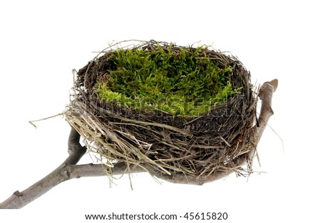 Empty easter and natural nest with egg