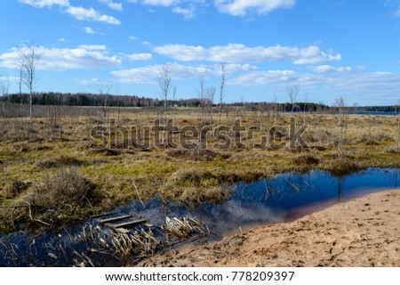 empty fields in autumn in countryside. nature in latvia #778209397