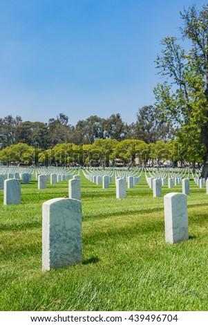 Empty green grass field full of white grave headstones.
