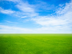 empty green grass field with blue sky and white clouds in the gardening and landscape shot photo use for design display product background concept.