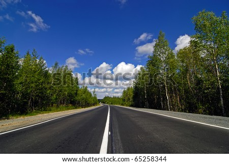 Empty highway passing through the forest