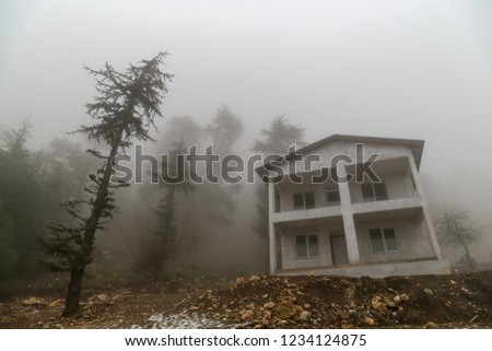 Empty house in cloudy forest on a mountain. Pine trees in mist near unfinished concrete building. Enchanted forest in rural area. #1234124875