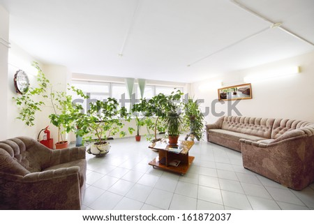 Empty light hall with plants growing in pots, a sofa and armchair
