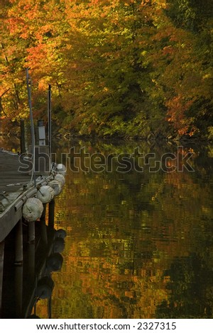 Empty marina dock along creek in fall with bright orange leaves on trees