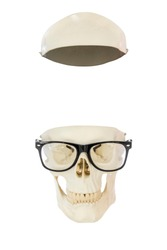 Empty nerd skull without brain wearing eyeglasses. Top of skull separated from lower part. Isolated on white background
