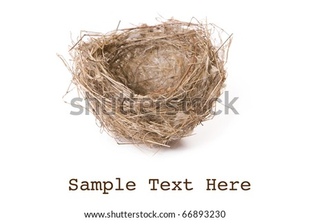 Empty nest isolated on white with space for text