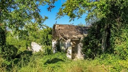Empty old abandoned ruined house with a sharp roof surrounded by forest. The roof is decay and broken. Abandoned house in countryside. No People