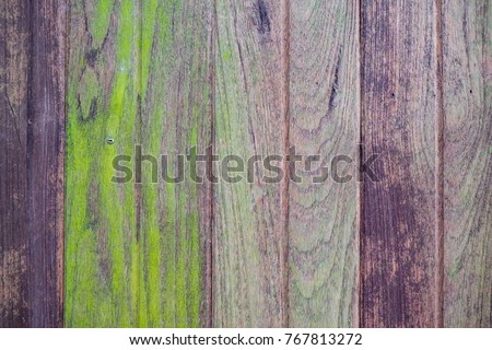 Empty old colour wood texture background decoration design